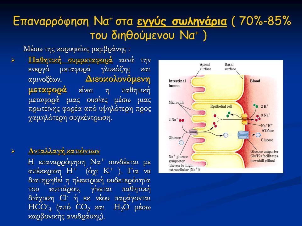 Eπαναρρόφηση Να + στα εγγύς σωληνάρια ( 70%-85% του διηθούμενου Να + ) Μέσω της κορυφαίας μεμβράνης : Μέσω της κορυφαίας μεμβράνης :  Παθητική συμμετ