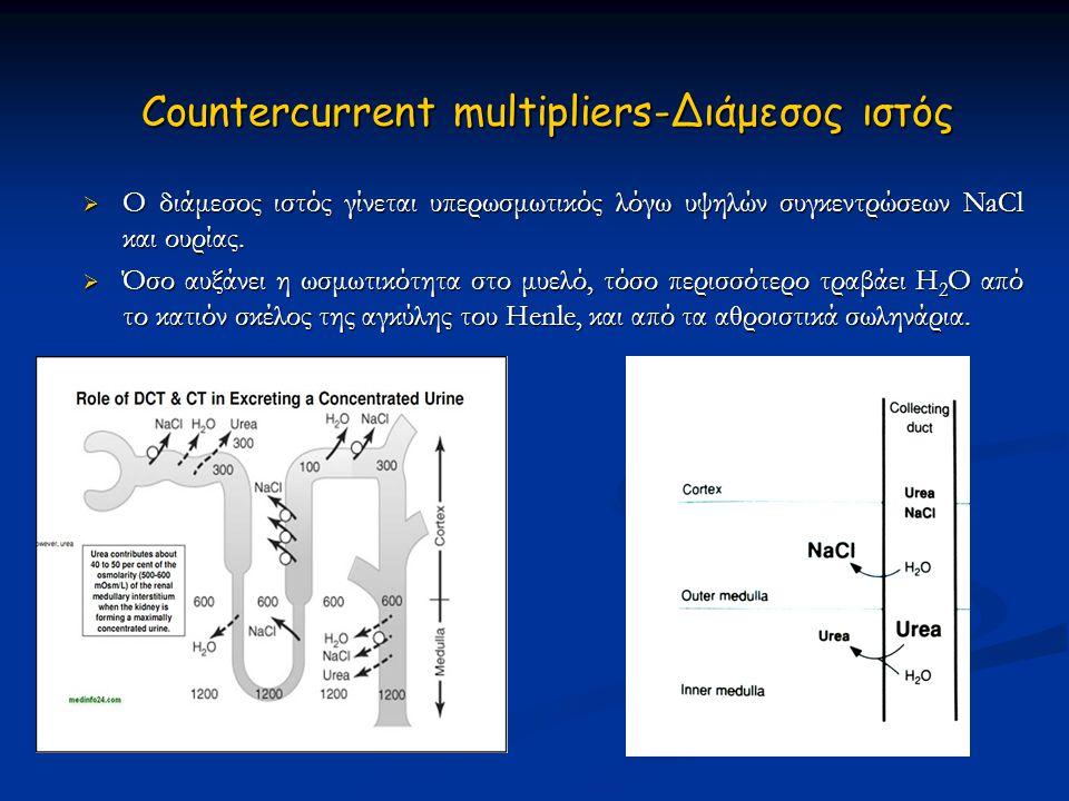 Countercurrent multipliers-Διάμεσος ιστός Countercurrent multipliers-Διάμεσος ιστός  Ο διάμεσος ιστός γίνεται υπερωσμωτικός λόγω υψηλών συγκεντρώσεων