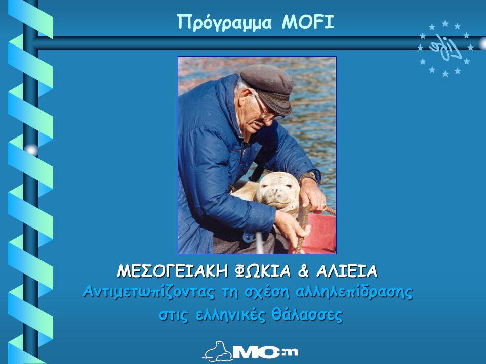 ΜΕΣΟΓΕΙΑΚΗ ΦΩΚΙΑ & ΑΛΙΕΙΑ Αντιμετωπίζοντας τη σχέση αλληλεπίδρασης στις ελληνικές θάλασσες στις ελληνικές θάλασσες Πρόγραμμα MOFI