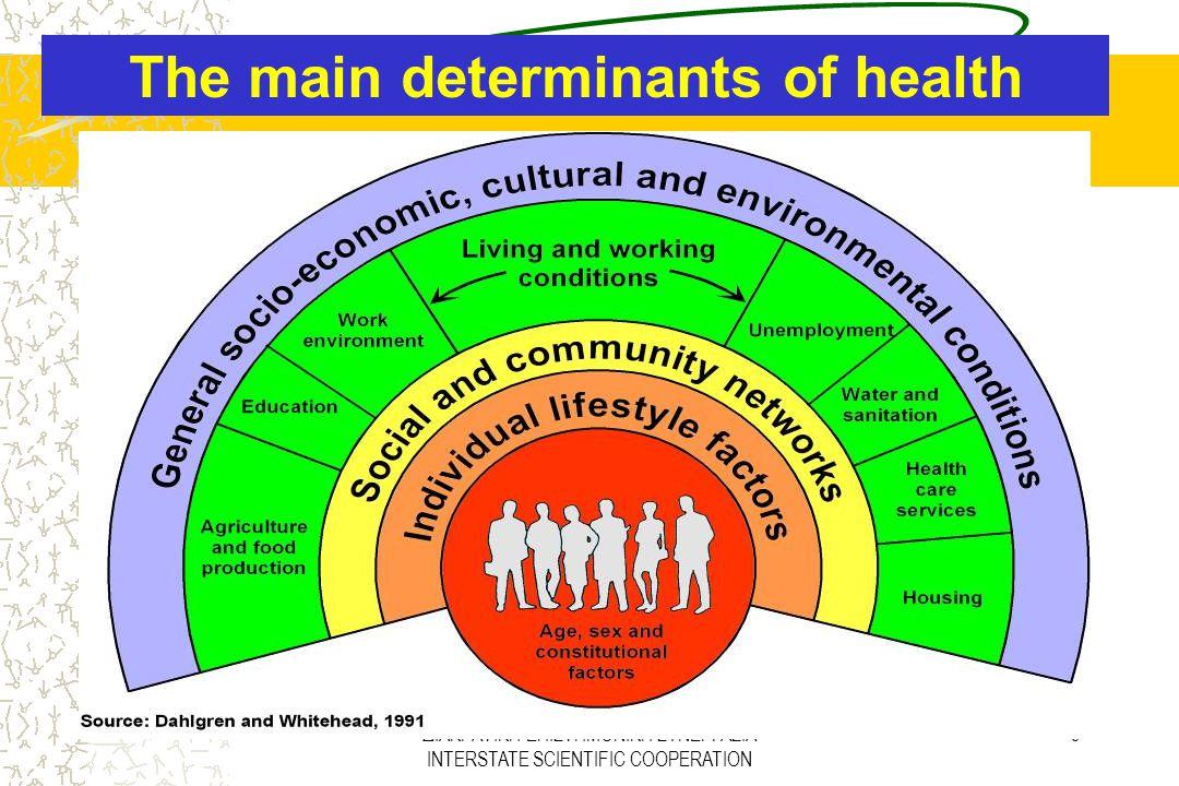 ΔΙΑΚΡΑΤΙΚΗ ΕΠΙΣΤΗΜΟΝΙΚΗ ΣΥΝΕΡΓΑΣΙΑ INTERSTATE SCIENTIFIC COOPERATION 5 The main determinants of health