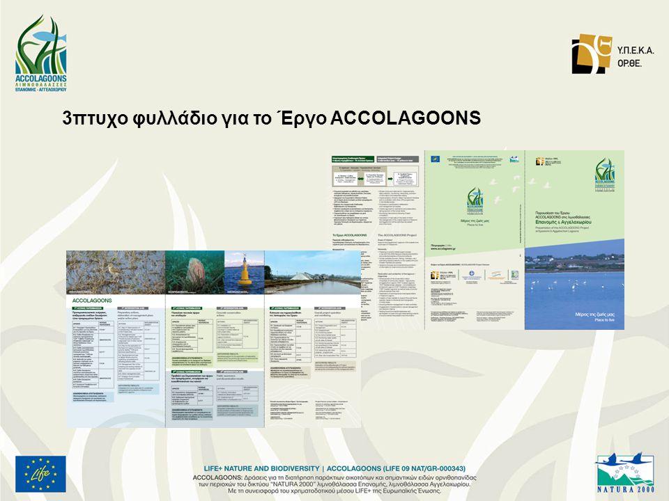 3πτυχο φυλλάδιο για το Έργο ACCOLAGOONS