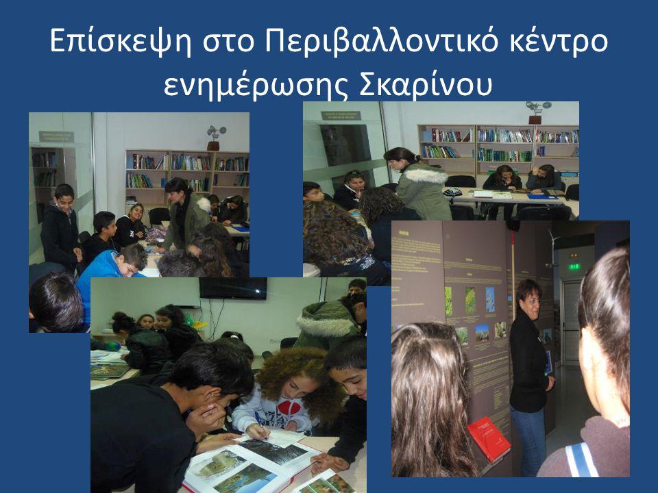 Δενδροφύτευση στο σχολείο Κυπαρίσσια και Πεύκα φυτεύτηκαν περιμετρικά στο σχολείο με σκοπό τον εμπλουτισμό των είδη μεγάλων κυπαρισσιών και πεύκων του σχολείου.