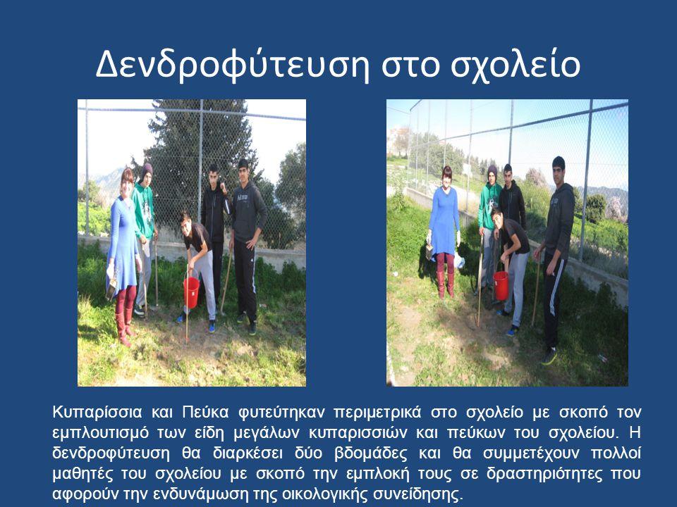Δενδροφύτευση στο σχολείο Κυπαρίσσια και Πεύκα φυτεύτηκαν περιμετρικά στο σχολείο με σκοπό τον εμπλουτισμό των είδη μεγάλων κυπαρισσιών και πεύκων του
