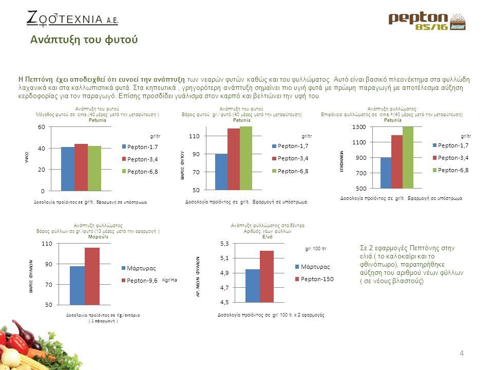 5 Στις μανταρινιές και στις πορτοκαλιές ( 3 και 5 ετών) μετρήθηκε η ευρωστία των βλαστών μετά από εφαρμογές Πεπτόνης με υδρολίπανση από τον Μάιο έως τέλη Αυγούστου σε κλίμακα από 1 εως 5 με τα κάτωθι αποτελέσματα: Τα πιο υγιή δέντρα είναι και πιο ανθεκτικά αλλά και πιο παραγωγικά.
