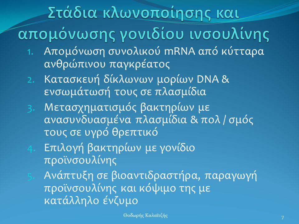 1. Απομόνωση συνολικού mRNA από κύτταρα ανθρώπινου παγκρέατος 2. Κατασκευή δίκλωνων μορίων DNA & ενσωμάτωσή τους σε πλασμίδια 3. Μετασχηματισμός βακτη