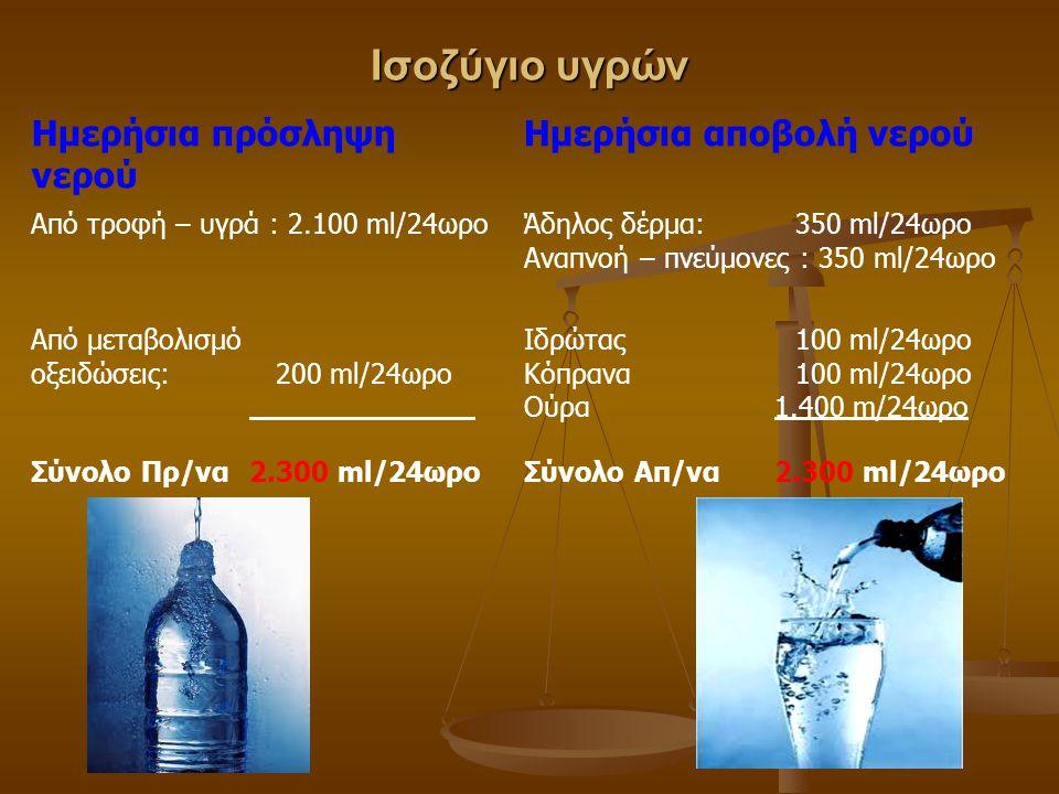 Ισοζύγιο υγρών Ημερήσια πρόσληψη νερού Ημερήσια αποβολή νερού Από τροφή – υγρά : 2.100 ml/24ωροΆδηλος δέρμα: 350 ml/24ωρο Αναπνοή – πνεύμονες : 350 ml