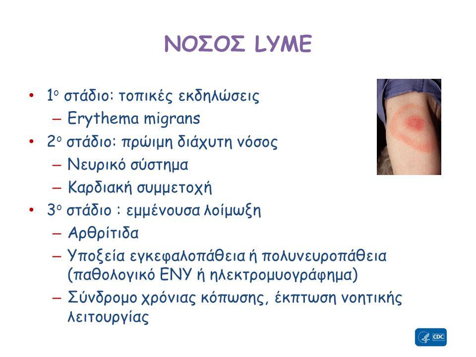 ΝΟΣΟΣ LYME • 1 ο στάδιο: τοπικές εκδηλώσεις – Erythema migrans • 2 ο στάδιο: πρώιμη διάχυτη νόσος – Νευρικό σύστημα – Καρδιακή συμμετοχή • 3 ο στάδιο : εμμένουσα λοίμωξη – Αρθρίτιδα – Υποξεία εγκεφαλοπάθεια ή πολυνευροπάθεια (παθολογικό ΕΝΥ ή ηλεκτρομυογράφημα) – Σύνδρομο χρόνιας κόπωσης, έκπτωση νοητικής λειτουργίας