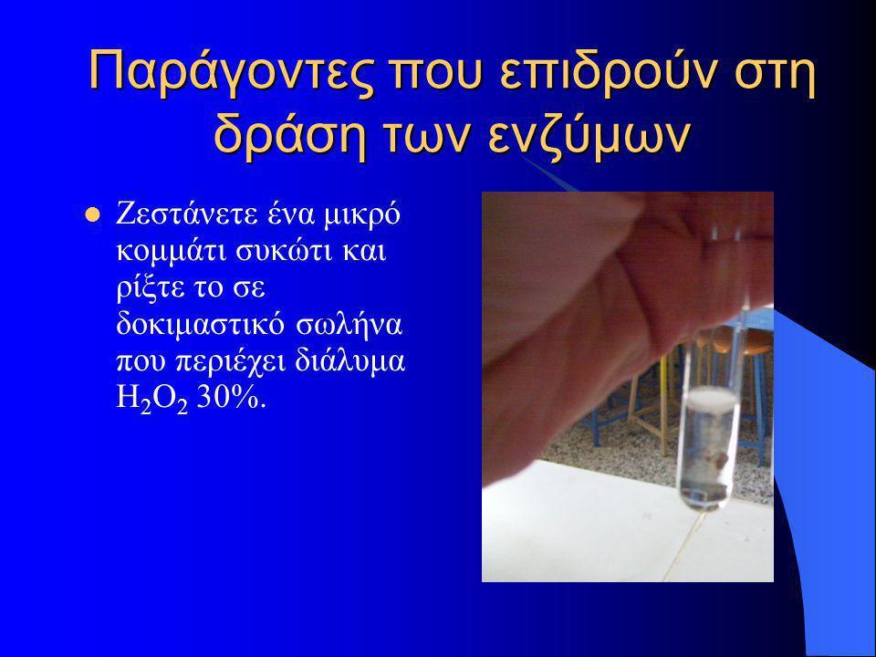 Παράγοντες που επιδρούν στη δράση των ενζύμων  Ζεστάνετε ένα μικρό κομμάτι συκώτι και ρίξτε το σε δοκιμαστικό σωλήνα που περιέχει διάλυμα Η 2 Ο 2 30%