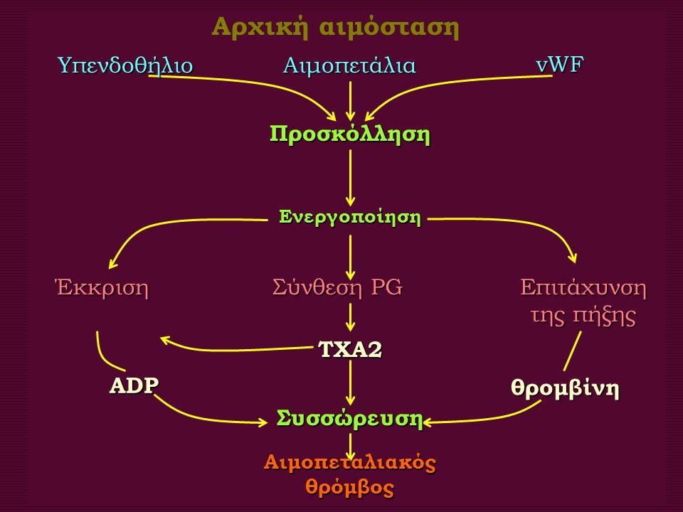 Πρώτα στάδια αιμοπεταλιακού θρόμβου. Προσκόλληση και συσσώρευση ενεργοποιημένων αιμοπεταλίων