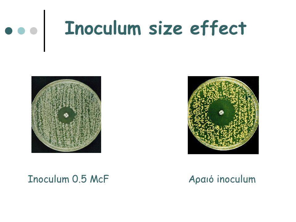 Inoculum size effect Αραιό inoculumInoculum 0.5 McF