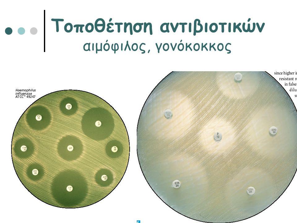 Τοποθέτηση αντιβιοτικών αιμόφιλος, γονόκοκκος