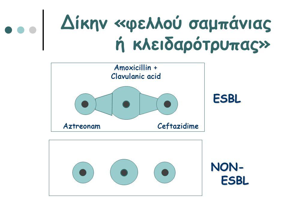 Amoxicillin + Clavulanic acid Ceftazidime Aztreonam ESBL NON- ESBL Δίκην «φελλού σαμπάνιας ή κλειδαρότρυπας»