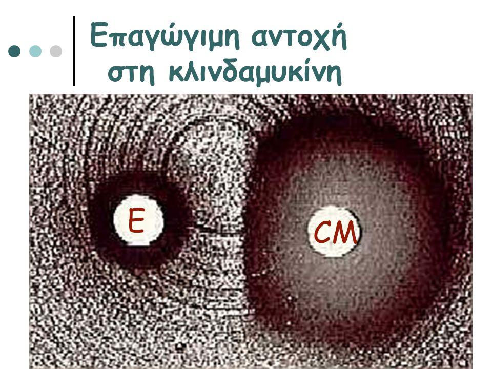 Ε CM Επαγώγιμη αντοχή στη κλινδαμυκίνη