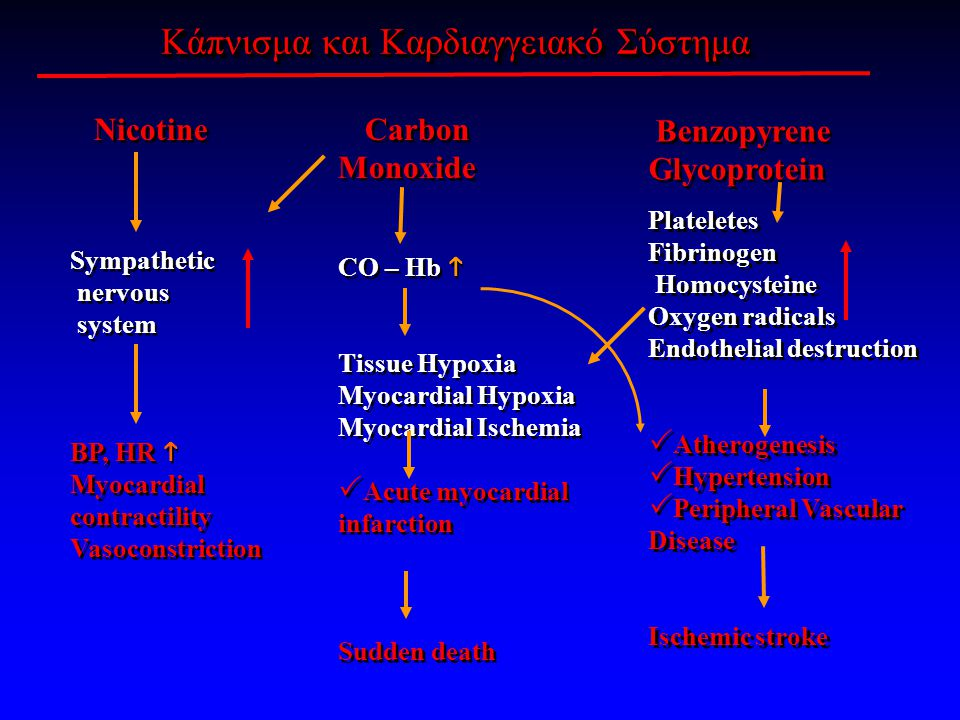 Κάπνισμα και Καρδιαγγειακό Σύστημα Nicotine Sympathetic nervous system BP, HR  Myocardial contractility Vasoconstriction Nicotine Sympathetic nervous system BP, HR  Myocardial contractility Vasoconstriction Carbon Monoxide CO – Hb  Tissue Hypoxia Myocardial Hypoxia Myocardial Ischemia  Acute myocardial infarction Sudden death Carbon Monoxide CO – Hb  Tissue Hypoxia Myocardial Hypoxia Myocardial Ischemia  Acute myocardial infarction Sudden death Benzopyrene Glycoprotein Plateletes Fibrinogen Homocysteine Oxygen radicals Endothelial destruction  Αtherogenesis  Hypertension  Peripheral Vascular Disease Ischemic stroke Benzopyrene Glycoprotein Plateletes Fibrinogen Homocysteine Oxygen radicals Endothelial destruction  Αtherogenesis  Hypertension  Peripheral Vascular Disease Ischemic stroke
