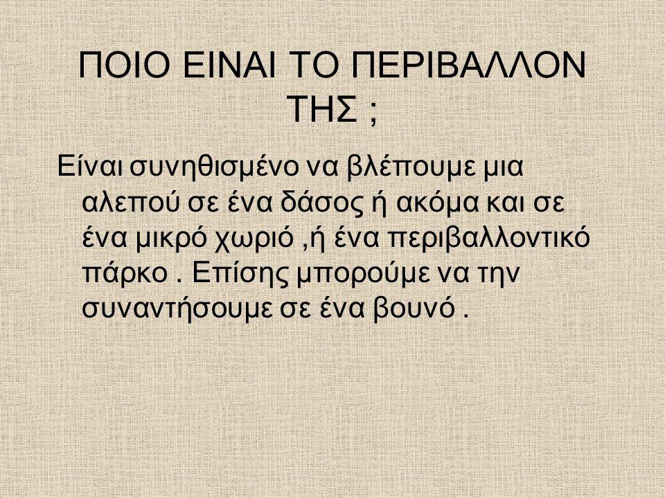 THE END ΤΕΛΟΣ !!! ΕΥΧΑΡΙΣΤΟΥΜΕ ΠΟΥ ΜΑΣ ΠΑΡΑΚΟΛΟΥΘΗΣΑΤΕ !!! ΕΛΠΙΖΟΥΜΕ ΝΑ ΣΑΣ ΑΡΕΣΕ !!!