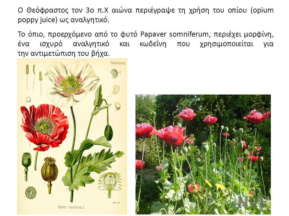 Ο Θεόφραστος τον 3ο π.Χ αιώνα περιέγραψε τη χρήση του οπίου (opium poppy juice) ως αναλγητικό. Το όπιο, προερχόμενο από το φυτό Papaver somniferum, πε