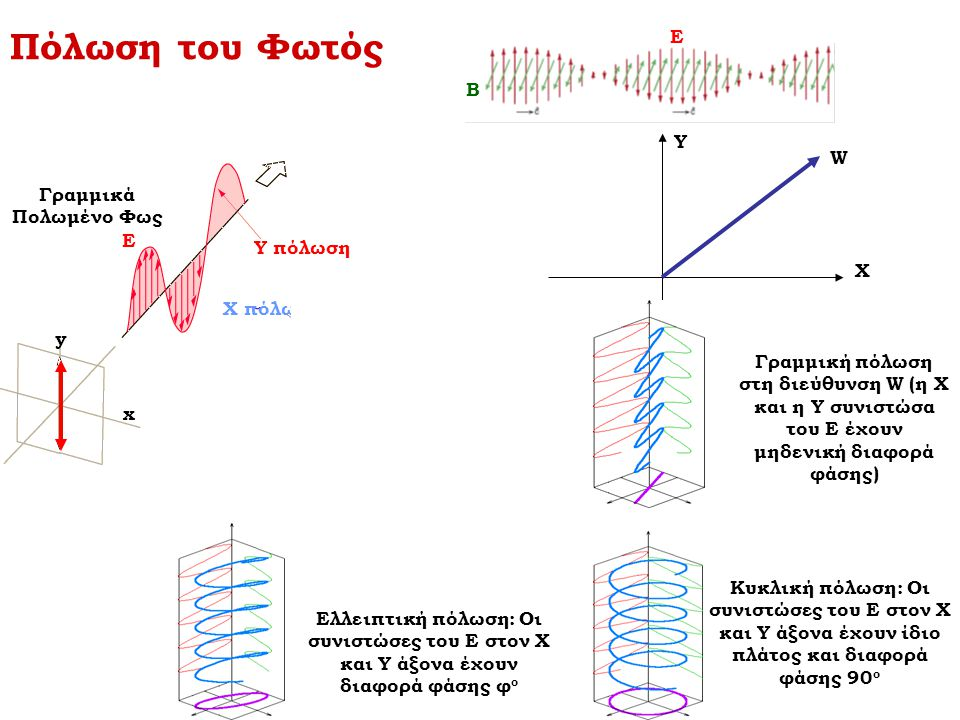 y x y x Ε Ε Πόλωση του Φωτός X πόλωση Ε Β Y πόλωση Γραμμικά Πολωμένο Φως Χ Υ W Γραμμική πόλωση στη διεύθυνση W (η Χ και η Υ συνιστώσα του Ε έχουν μηδε