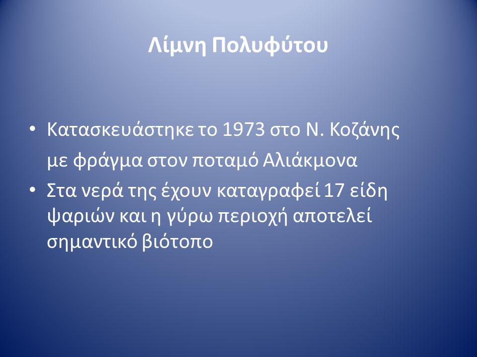 • Κατασκευάστηκε το 1973 στο Ν. Κοζάνης με φράγμα στον ποταμό Αλιάκμονα • Στα νερά της έχουν καταγραφεί 17 είδη ψαριών και η γύρω περιοχή αποτελεί σημ
