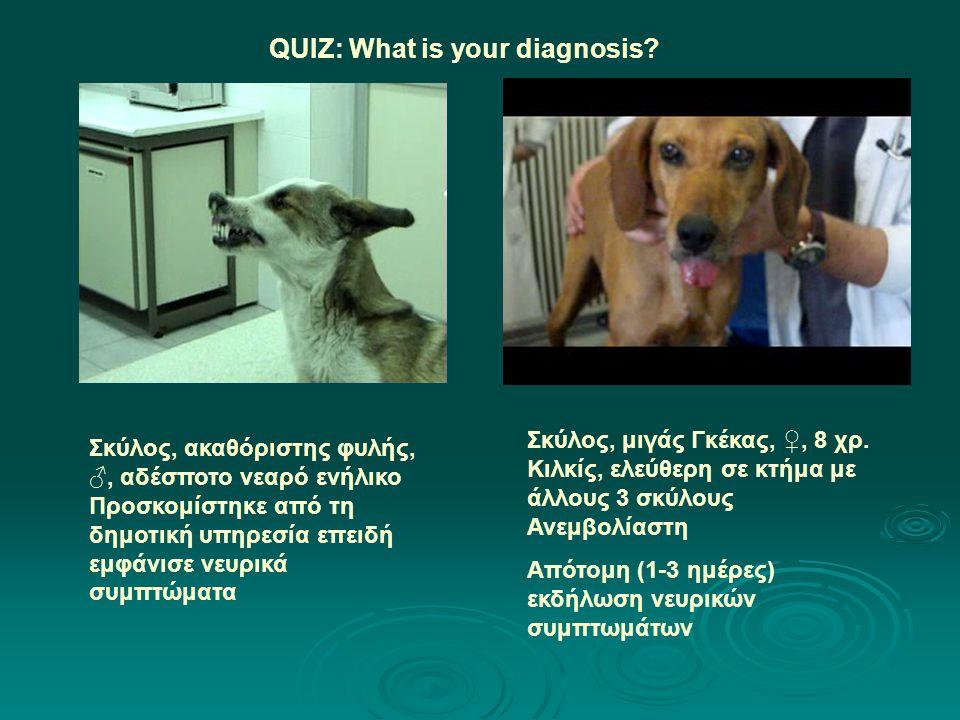 QUIZ: What is your diagnosis? Σκύλος, μιγάς Γκέκας, ♀, 8 χρ. Κιλκίς, ελεύθερη σε κτήμα με άλλους 3 σκύλους Ανεμβολίαστη Απότομη (1-3 ημέρες) εκδήλωση