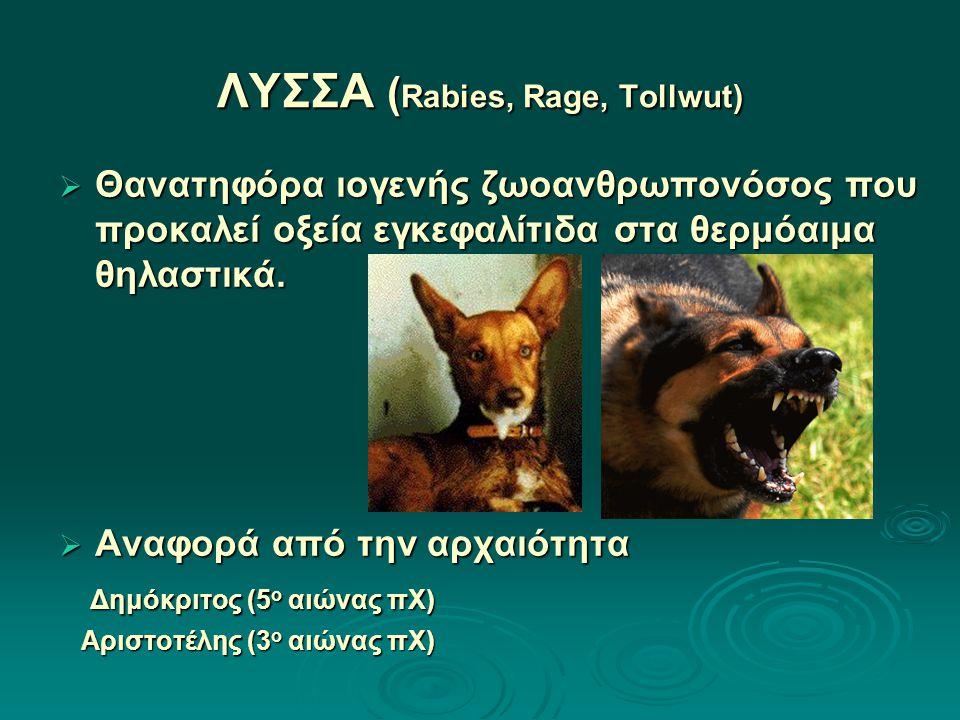 ΛΥΣΣΑ ( Rabies, Rage, Tollwut)  Θανατηφόρα ιογενής ζωοανθρωπονόσος που προκαλεί οξεία εγκεφαλίτιδα στα θερμόαιμα θηλαστικά.