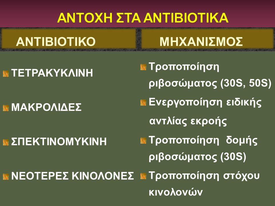 ΑΝΤΙΒΙΟΤΙΚΟ ΤΕΤΡΑΚΥΚΛΙΝΗ ΜΑΚΡΟΛΙΔΕΣ ΣΠΕΚΤΙΝΟΜΥΚΙΝΗ ΝΕΟΤΕΡΕΣ ΚΙΝΟΛΟΝΕΣ Τροποποίηση ριβοσώματος (30S, 50S) Ενεργοποίηση ειδικής αντλίας εκροής Τροποποίη