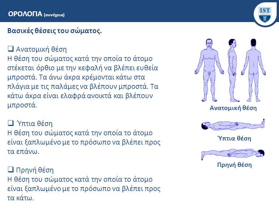 ΟΡΟΛΟΓΙΑ (συνέχεια) Βασικές θέσεις του σώματος.  Ανατομική θέση Η θέση του σώματος κατά την οποία το άτομο στέκεται όρθιο με την κεφαλή να βλέπει ευθ