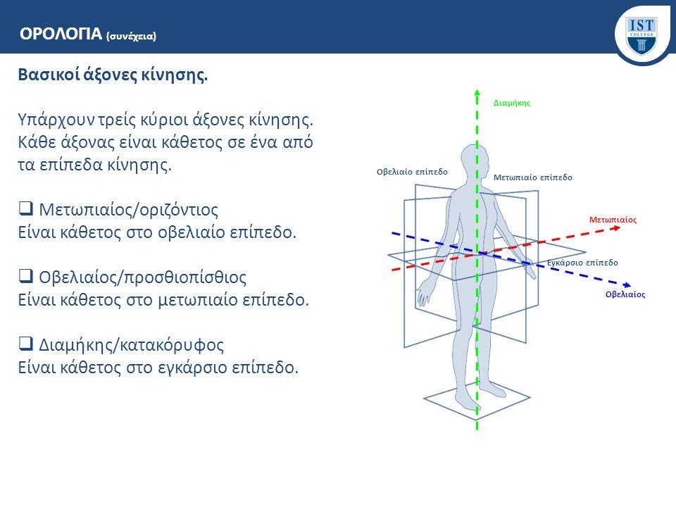 Βασικοί όροι κίνησης των αρθρώσεων (ανατομική θέση - θέση 0° μοιρών).