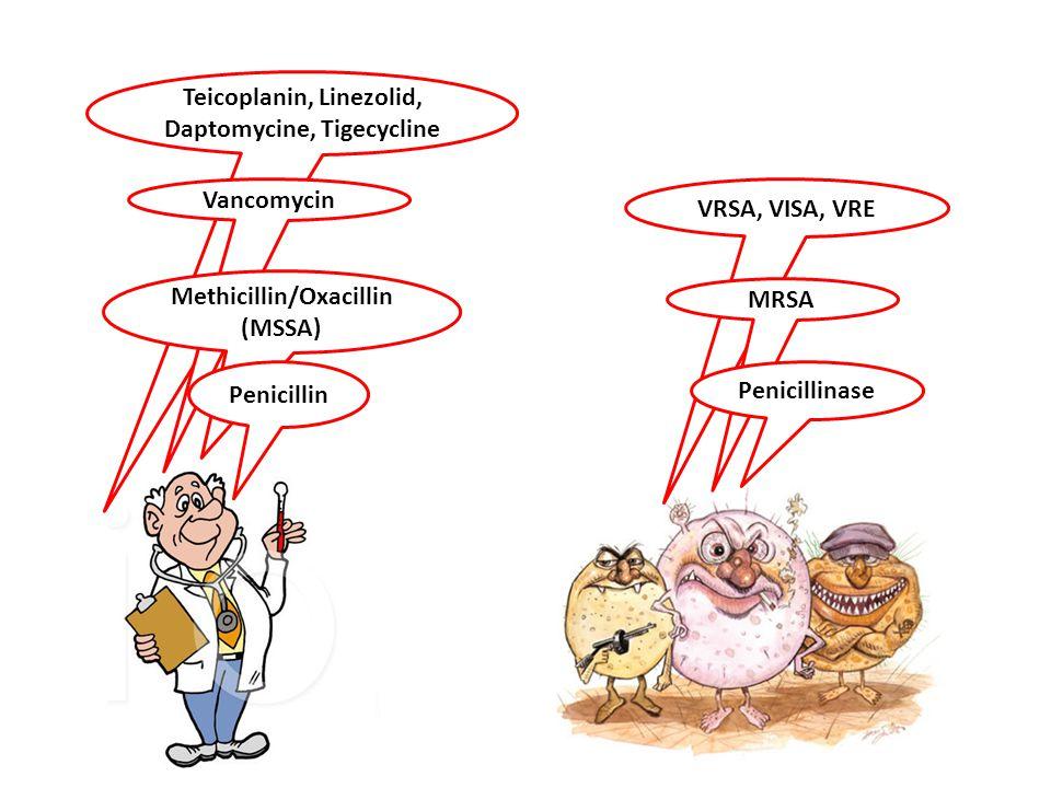 Teicoplanin, Linezolid, Daptomycine, Tigecycline VRSA, VISA, VRE Vancomycin MRSA Methicillin/Oxacillin (MSSA) Penicillin Penicillinase
