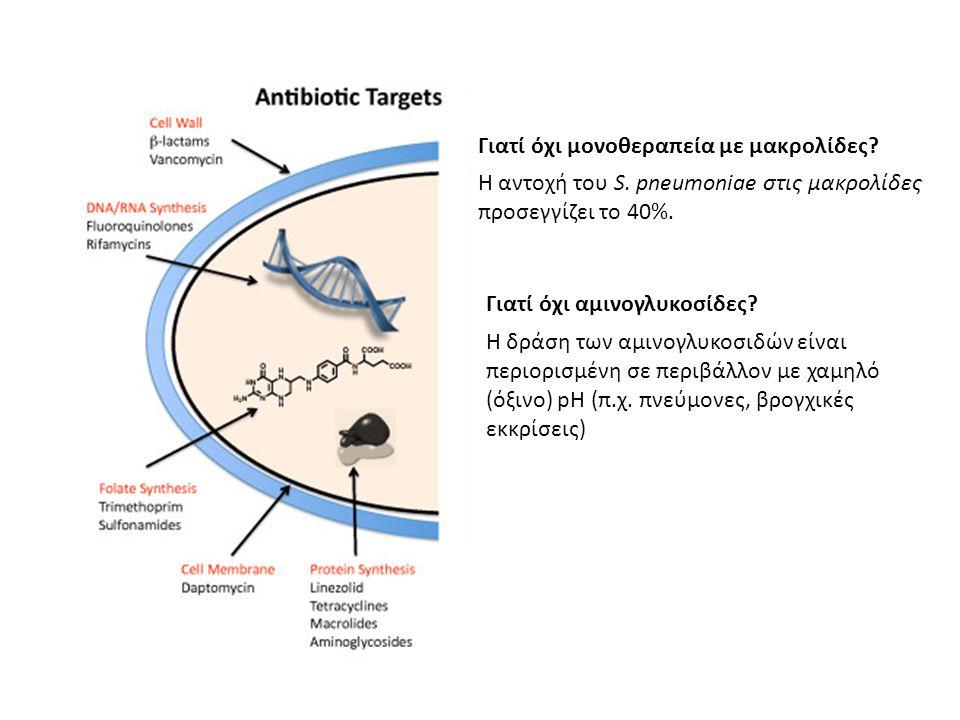 Γιατί όχι μονοθεραπεία με μακρολίδες? Η αντοχή του S. pneumoniae στις μακρολίδες προσεγγίζει το 40%. Γιατί όχι αμινογλυκοσίδες? Η δράση των αμινογλυκο