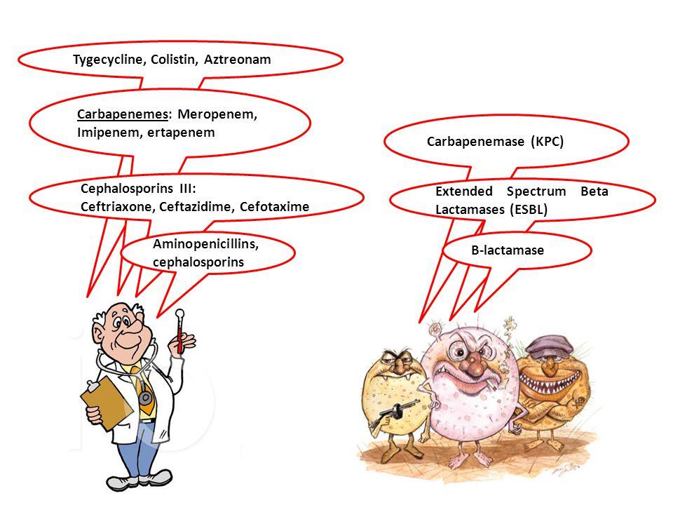 Tygecycline, Colistin, Aztreonam Carbapenemase (KPC) Carbapenemes: Meropenem, Imipenem, ertapenem Extended Spectrum Beta Lactamases (ESBL) Cephalospor