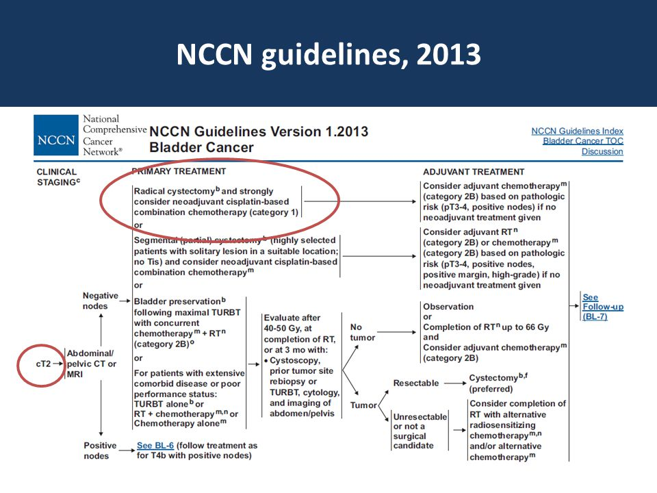 NCCN guidelines, 2013