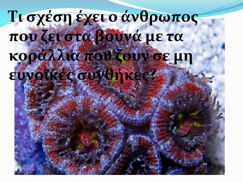 Τι σχέση έχει ο άνθρωπος που ζει στα βουνά με τα κοράλλια που ζουν σε μη ευνοϊκές συνθήκες?