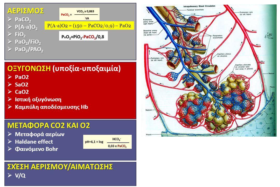 ΑΕΡΙΣΜOΣ  PaCO 2  P(A-a)O 2  FiO 2  PaO 2 /FiO 2  PaO 2 /PAO 2 ΟΞΥΓOΝΩΣΗ ΟΞΥΓOΝΩΣΗ (υποξία-υποξαιμία)  PaO2  SaO2  CaO2  Ιστική οξυγόνωση  Κ