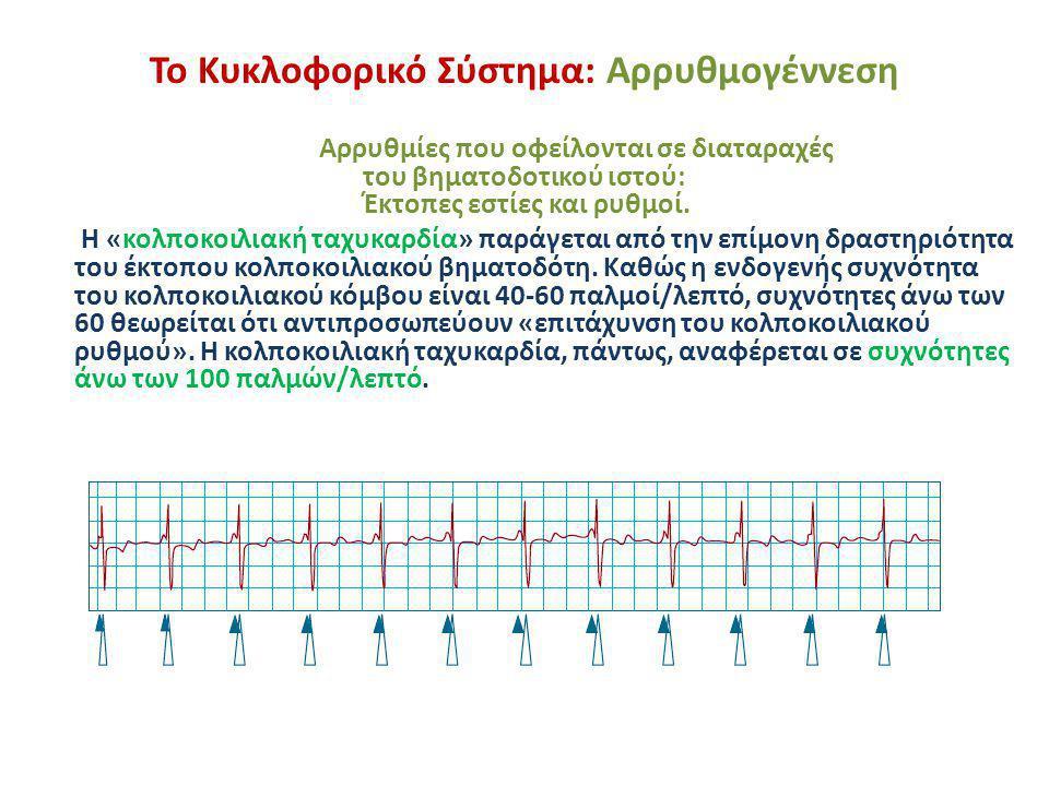Το Κυκλοφορικό Σύστημα: Αρρυθμογέννεση Αρρυθμίες που οφείλονται σε διαταραχές του βηματοδοτικού ιστού: Έκτοπες εστίες και ρυθμοί. Η «κολποκοιλιακή ταχ