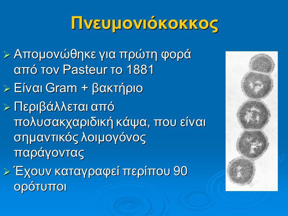 Πνευμονιόκοκκος  Απομονώθηκε για πρώτη φορά από τον Pasteur το 1881  Είναι Gram + βακτήριο  Περιβάλλεται από πολυσακχαριδική κάψα, που είναι σημαντ