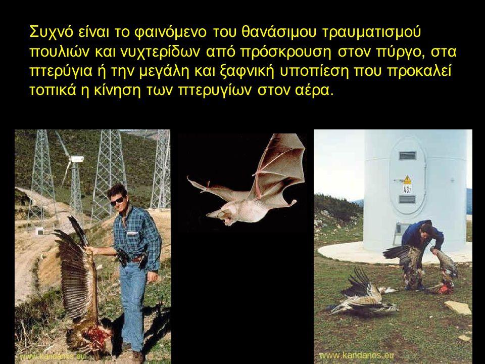 Συχνό είναι το φαινόμενο του θανάσιμου τραυματισμού πουλιών και νυχτερίδων από πρόσκρουση στον πύργο, στα πτερύγια ή την μεγάλη και ξαφνική υποπίεση που προκαλεί τοπικά η κίνηση των πτερυγίων στον αέρα.