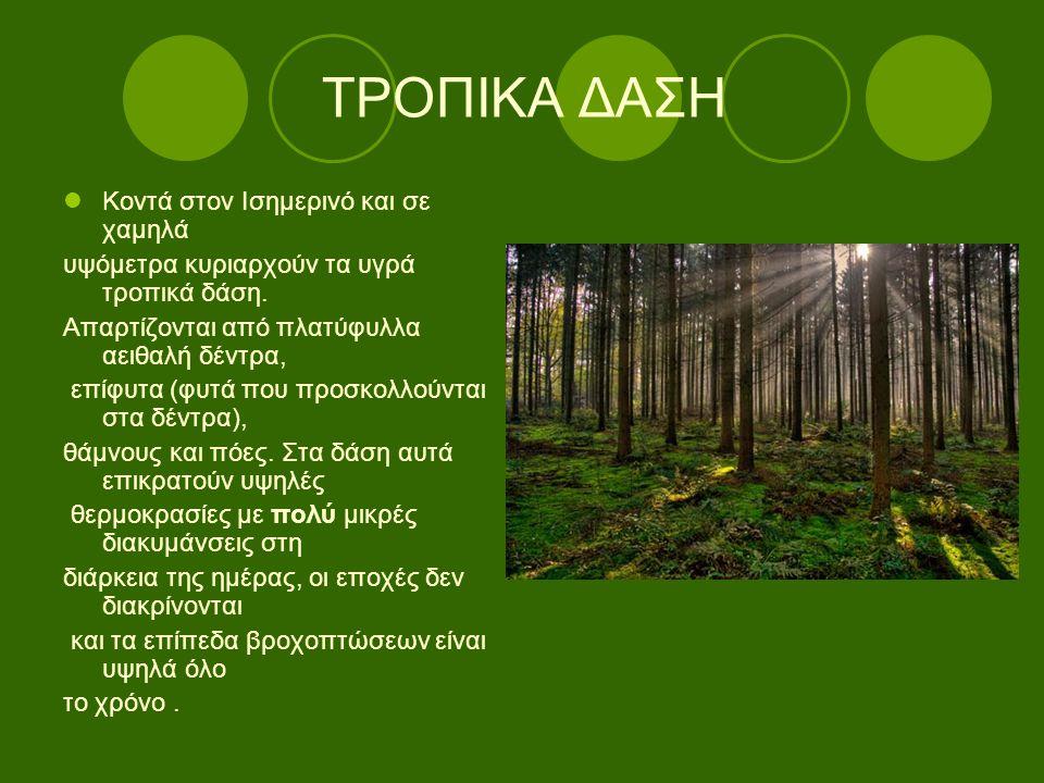 Υπάρχουν διάφορα είδη υγρών τροπικών δασών ανάλογα με τις διαφορές στη θερμοκρασία, στο υψόμετρο και στις βροχοπτώσεις.