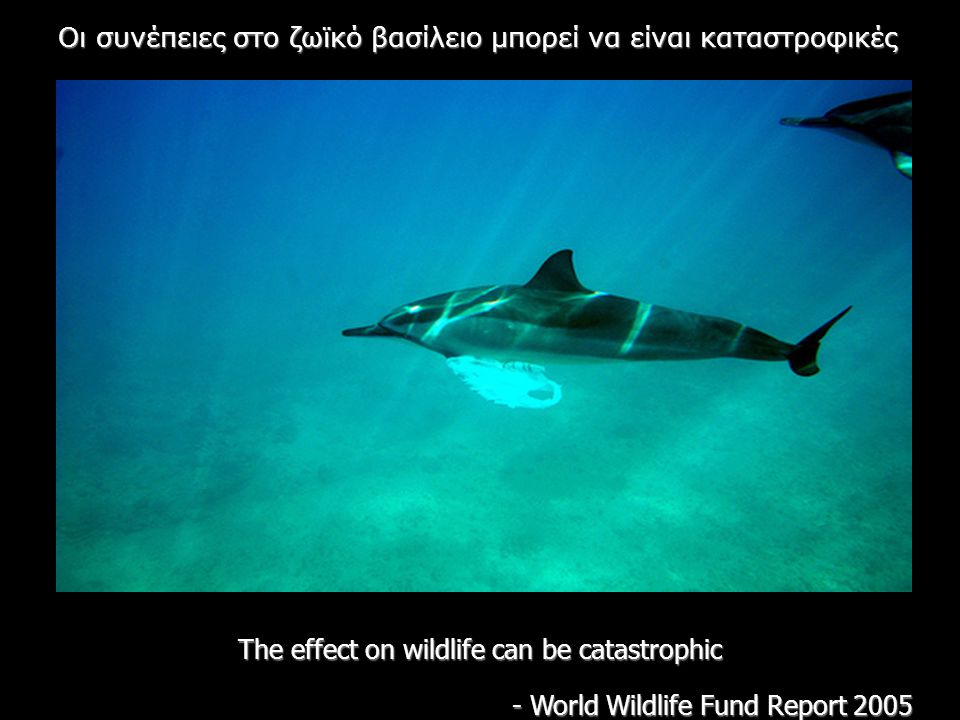 The effect on wildlife can be catastrophic - World Wildlife Fund Report 2005 Oι συνέπειες στο ζωϊκό βασίλειο μπορεί να είναι καταστροφικές