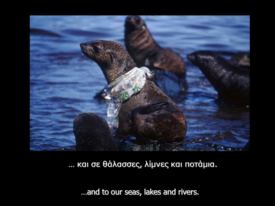 They die after ingesting plastic bags which they mistake for food - World Wildlife Fund Report 2005 … τις καταπίνουν πιστεύοντας ότι πρόκειται για τροφή.