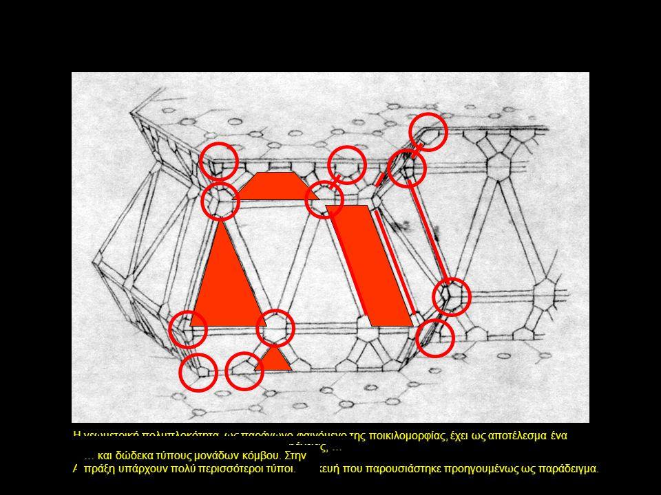 Η γεωμετρική πολυπλοκότητα, ως παράγωγο φαινόμενο της ποικιλομορφίας, έχει ως αποτέλεσμα ένα μεγάλο πλήθος κατασκευαστικών μονάδων.
