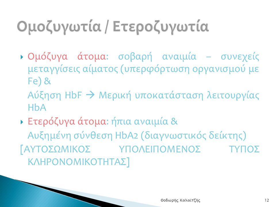  Ομόζυγα άτομα: σοβαρή αναιμία – συνεχείς μεταγγίσεις αίματος (υπερφόρτωση οργανισμού με Fe) & Αύξηση HbF  Μερική υποκατάσταση λειτουργίας ΗbA  Ετερόζυγα άτομα: ήπια αναιμία & Αυξημένη σύνθεση HbA2 (διαγνωστικός δείκτης) [ΑΥΤΟΣΩΜΙΚΟΣ ΥΠΟΛΕΙΠΟΜΕΝΟΣ ΤΥΠΟΣ ΚΛΗΡΟΝΟΜΙΚΟΤΗΤΑΣ] Θοδωρής Καλαϊτζής12