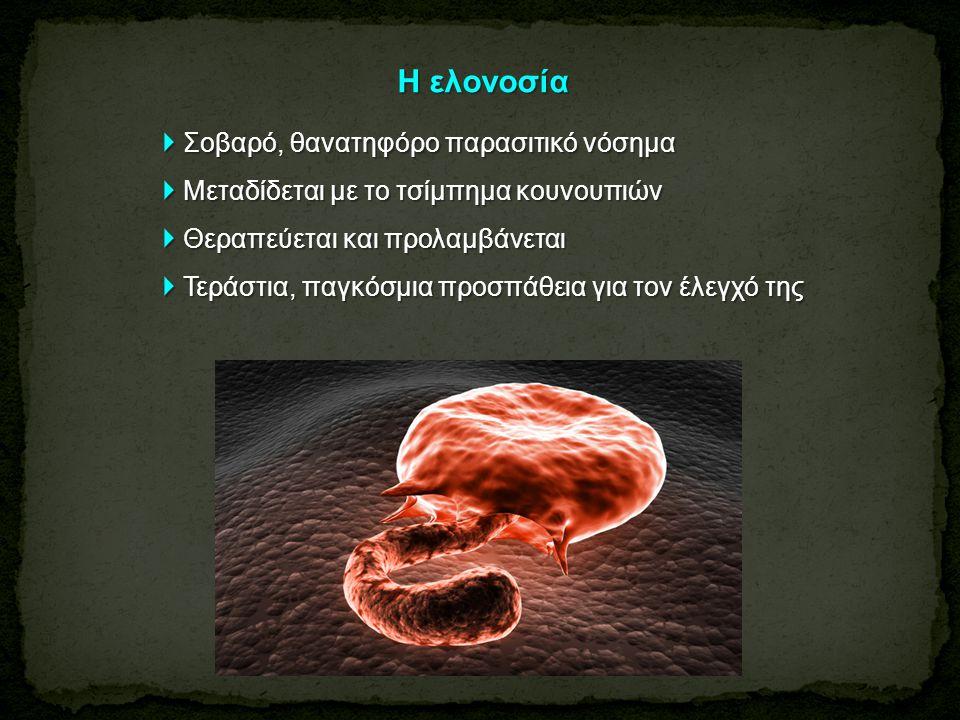 Διάγνωση ● Εξέταση περιφερικού αίματος (χρώση Giemsa κ.ά.) σε λεπτό επίχρισμα ή παχεία σταγόνα - ταυτοποίηση ● Ανιχνεύση ειδικών αντιγόνων (ανοσοχρωματογραφία με τα «γρήγορα διαγνωστικά τεστ» - διαχωρισμός με τα «γρήγορα διαγνωστικά τεστ» - διαχωρισμός P.