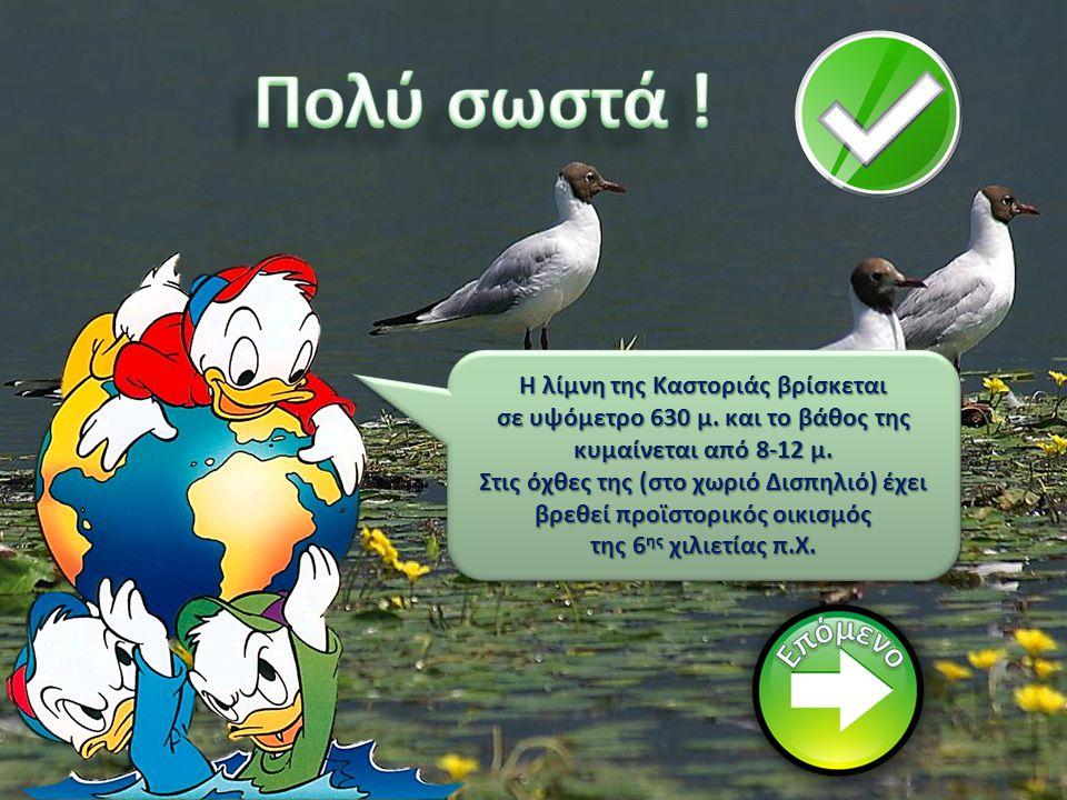 Ας πάμε στη λίμνη Καστοριάς(Ορεστιάδα)... Καστοριάς(Ορεστιάδα)...