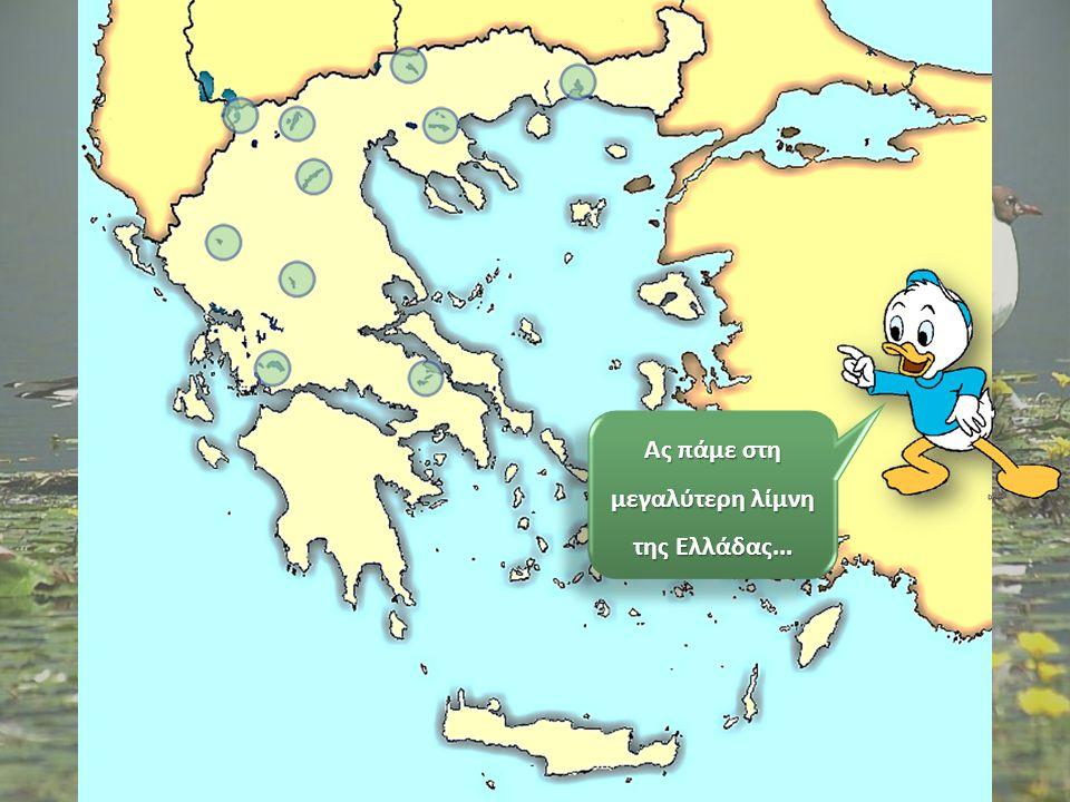 Ε, παιδιά, νομίζω ότι ξέρω πού είναι ο θείος Ντόναλντ! Θυμήθηκα ότι θα πήγαινε στη μεγαλύτερη λίμνη της Ελλάδας! Ε, παιδιά, νομίζω ότι ξέρω πού είναι
