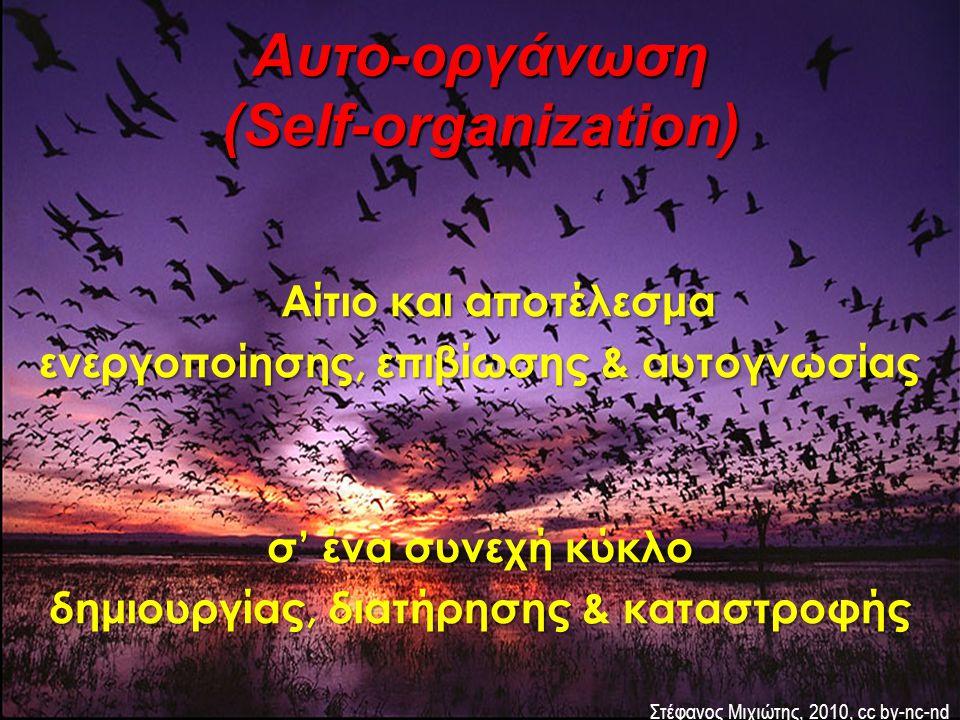 Αίτιο και αποτέλεσμα ενεργοποίησης, επιβίωσης & αυτογνωσίας σ' ένα συνεχή κύκλο δημιουργίας, διατήρησης & καταστροφής Αυτο-οργάνωση (Self-organization