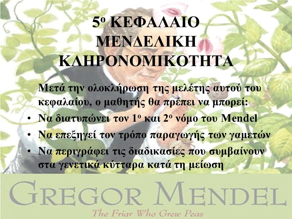 5 ο ΚΕΦΑΛΑΙΟ ΜΕΝΔΕΛΙΚΗ ΚΛΗΡΟΝΟΜΙΚΟΤΗΤΑ Μετά την ολοκλήρωση της μελέτης αυτού του κεφαλαίου, ο μαθητής θα πρέπει να μπορεί: •Να διατυπώνει τον 1 ο και 2 ο νόμο του Mendel •Να επεξηγεί τον τρόπο παραγωγής των γαμετών •Να περιγράφει τις διαδικασίες που συμβαίνουν στα γενετικά κύτταρα κατά τη μείωση