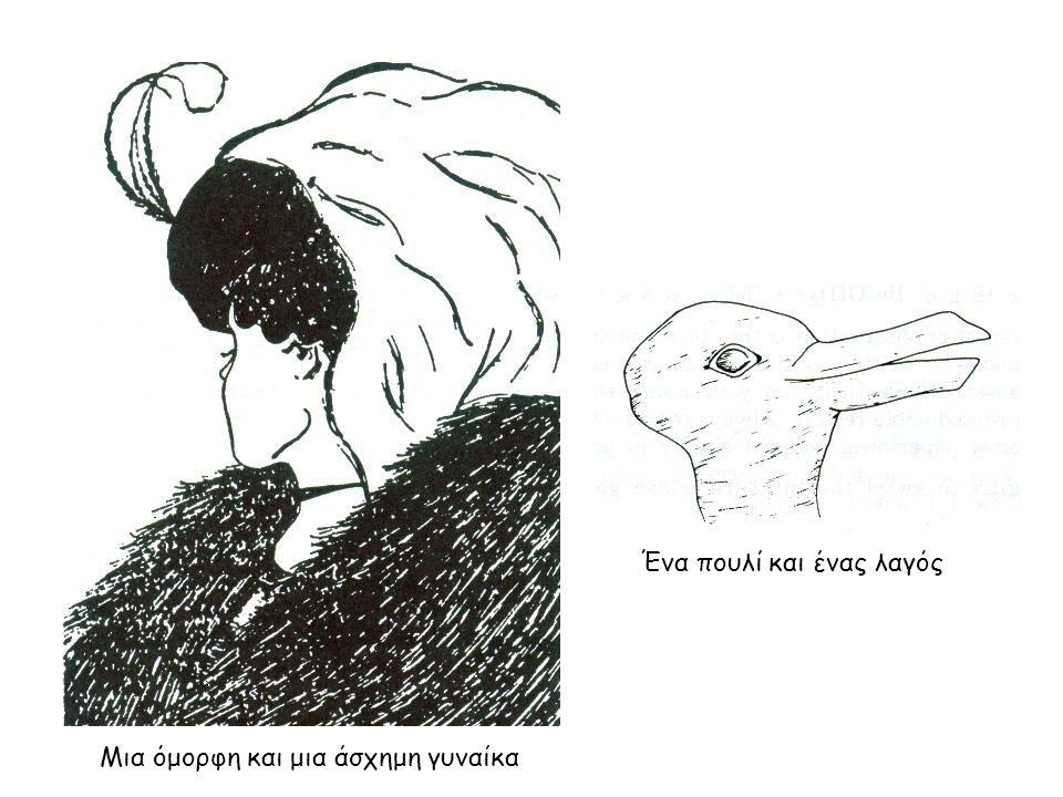 Μια όμορφη και μια άσχημη γυναίκα Ένα πουλί και ένας λαγός