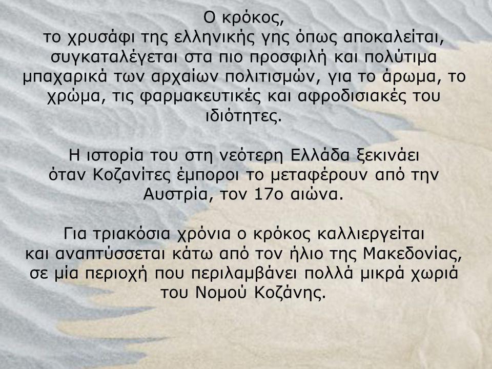 Ο κρόκος, το χρυσάφι της ελληνικής γης όπως αποκαλείται, συγκαταλέγεται στα πιο προσφιλή και πολύτιμα μπαχαρικά των αρχαίων πολιτισμών, για το άρωμα, το χρώμα, τις φαρμακευτικές και αφροδισιακές του ιδιότητες.