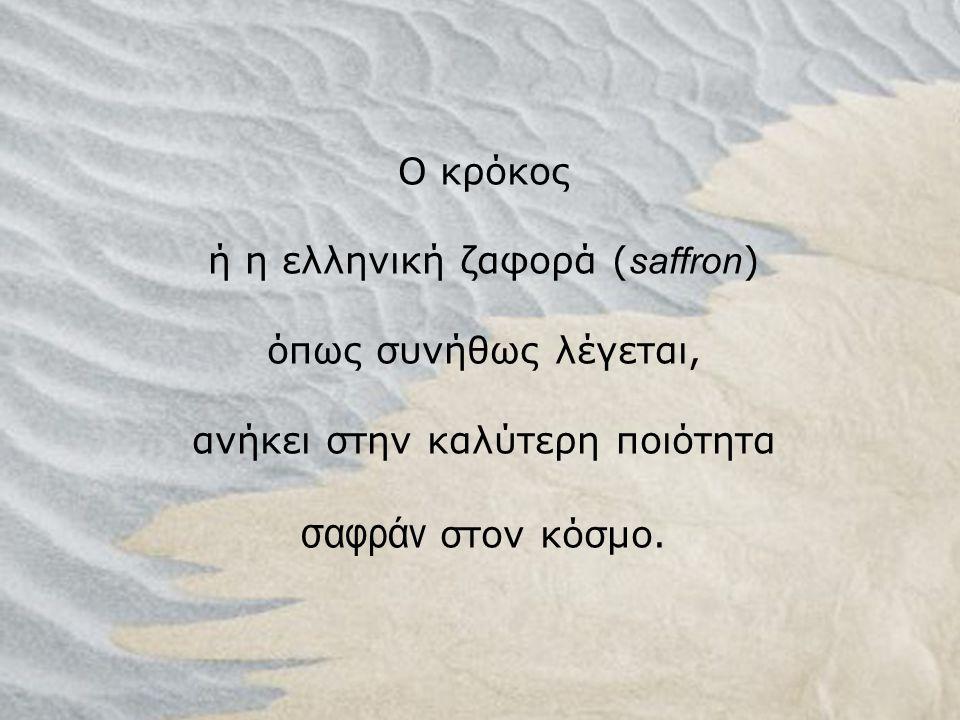 Ο κρόκος ή η ελληνική ζαφορά ( saffron ) όπως συνήθως λέγεται, ανήκει στην καλύτερη ποιότητα σαφράν στον κόσμο.