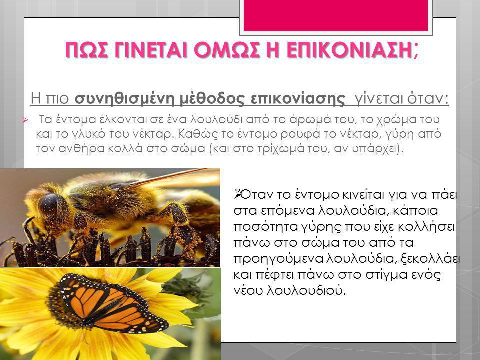 Η πιο συνηθισμένη μέθοδος επικονίασης γίνεται όταν:  Τα έντομα έλκονται σε ένα λουλούδι από το άρωμά του, το χρώμα του και το γλυκό του νέκταρ. Καθώς